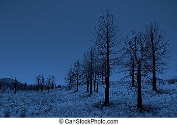toppig bergskedja, mountains, träd, månbelyst