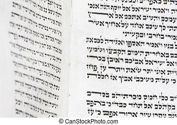 torah script