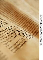 Torah Scroll - Hebrew writing in a Torah scroll