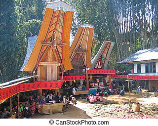 Toraja ceremony in traditional houses, Rantepao, Sulawesi island, Indonesia, Panorama