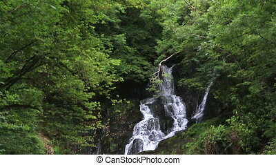 Torc Waterfall in Killarney National Park. Ring of Kerry in...