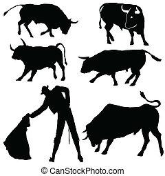 torero, toros