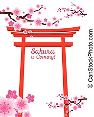 torii, flores, cereza, puerta