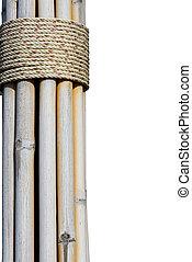 torka, bambu, knippe