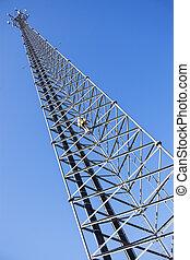torn, klättrare, cellformig, uppåtstigande