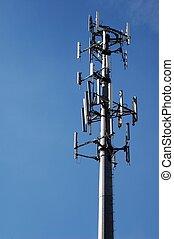 torn, mikrovåg
