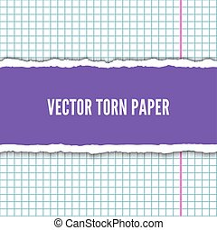 Torn notebook paper pieces realistic vector