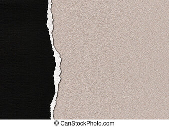 A Ripped Textured Paper Background