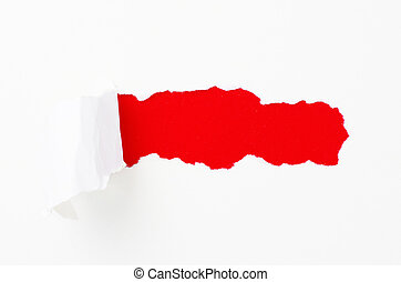 Torn paper banner, isolated on white