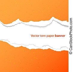 Torn paper rectangle banner with drop shadows. Vector illustration