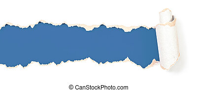 torn paper blue header isolated