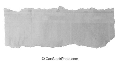 Torn paper - Piece of torn paper on plain background