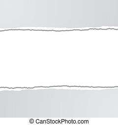 Torn Paper - Torn paper background