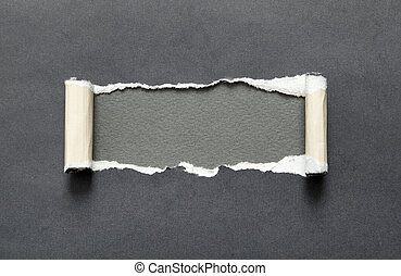 Torn paper with grey space for your message - Torn black...