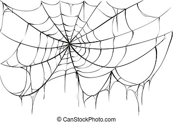 Torn spider web on white background. Vector illustration