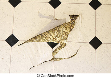 Torn Up Linoleum Floor - Old white and black speckled...