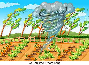 tornado, fattoria, scena