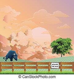 toro, amanecer, señal, tenga cuidado