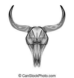 toro, skull., 3d, estilo, vector, ilustración, para, impresiones, o, t-shirt.