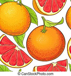 toronja, patrón, vector, fruits