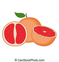 toronja, plano de fondo, fruta, entero, ilustración, vector, blanco, mitad