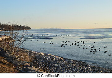 Toronto Skyline - Looking east from Oakville Harbour Toronto...