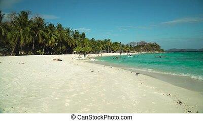 Torpical island with white sandy beach. - Sandy beach on...