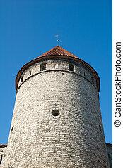 torre, antiga, tallinn