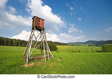 torre, caza