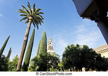 Torre del Alminar of the Mezquita in Cordoba
