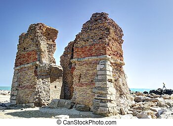 torre, flavia