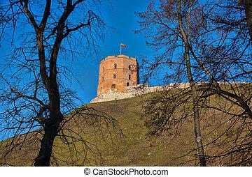 torre, gediminas'