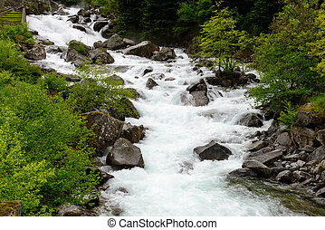 torrent in the french Pyrenees