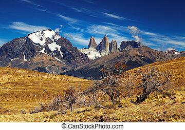 torres del paine, チリ, patagonia