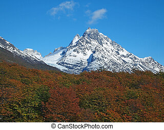 Torres del Paine in fall, Chile. - Torres del Paine north...