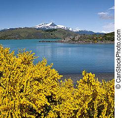 Torres del Paine National Park - Chile - Torres del Paine...