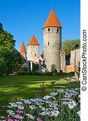 torres, tallinn., estónia