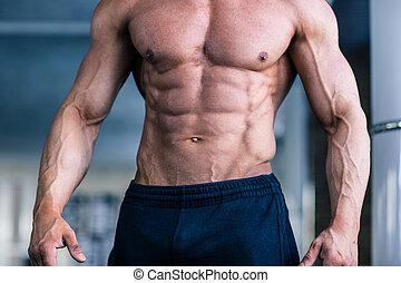 torso, gespierd, man's