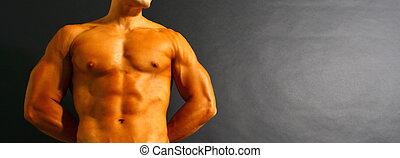 torso, gespierd