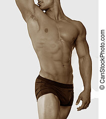 torso, mannelijke