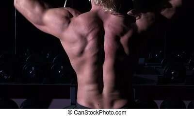 Torso of bodybuilder who is training in a gym with dumbbells, and up his hands