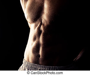 muscular man - torso of young muscular man, isolated on...