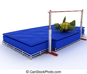 tortoise competing in