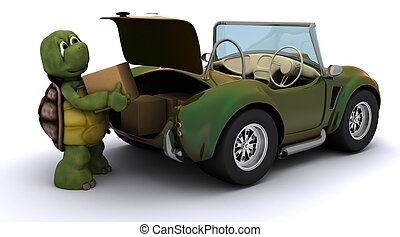 tortoise loading boxes in  a car