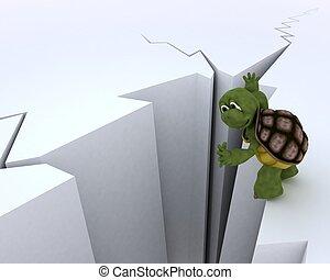 tortoise on a cliff edge