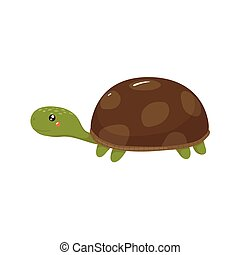 Tortoise Realistic Childish Illustration
