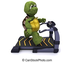 Tortoise running on a treadmill