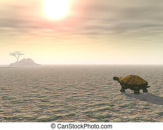 A lone tortoise plods across a parched desert landscape under a blazing sun, toward a distant tree on a hill.