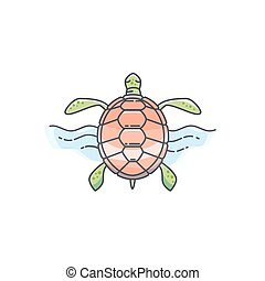Tortoise vector illustration