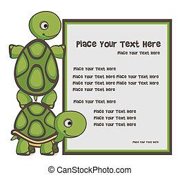 tortue, bannière